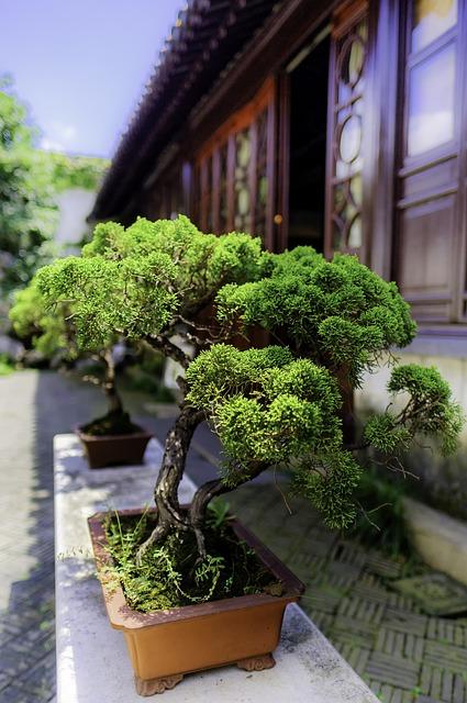 Sztuczne drzewko bonsai