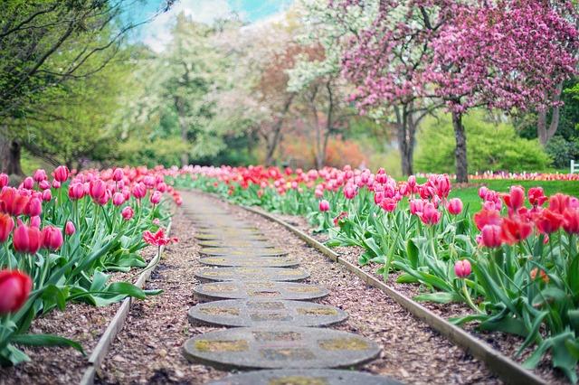 Jak łatwo i skutecznie udekorować nasz ogród?